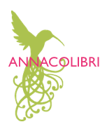 ANNACOLIBRI, tech savvy coaching, women, divorce, entrepreneurship, web presence, values-based marketing