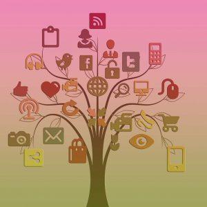 SOCIAL NETWORKS: THE FUNDAMENTAL TOOLS OF DIGITAL MARKETING