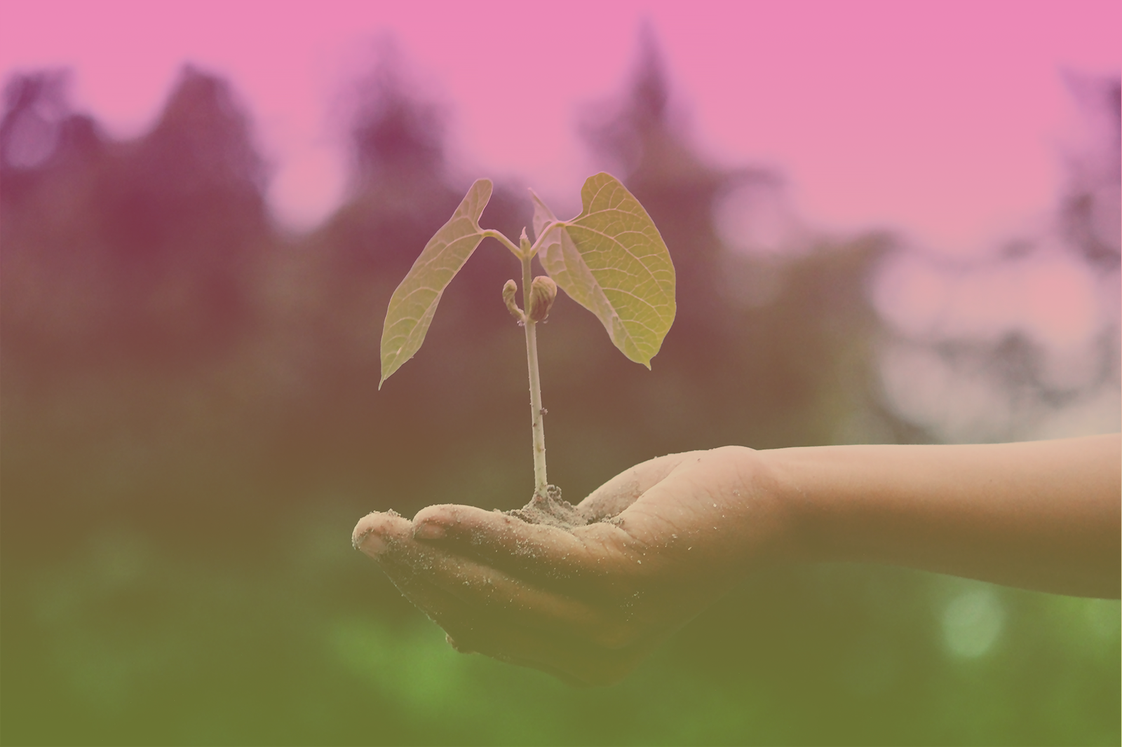 How to Define Social Responsibility and Marketing Ethics for Your Business